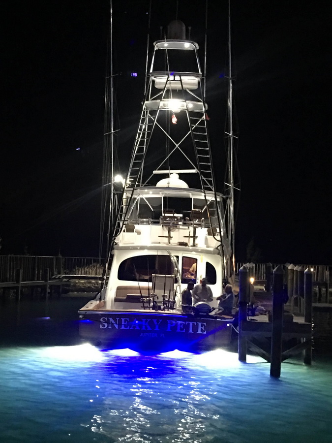 blue marlin cove sneaky pete at night