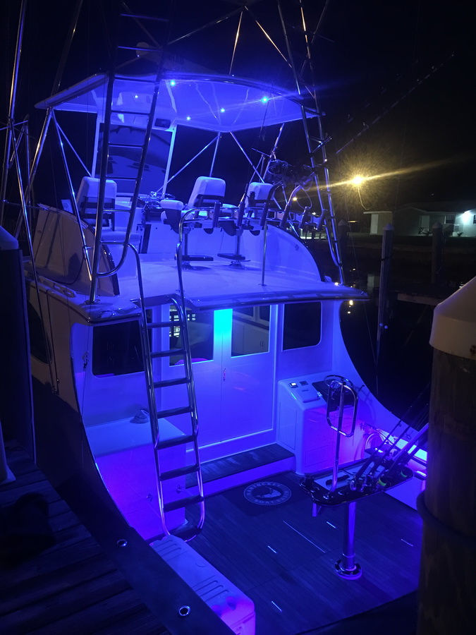 blue marlin cove fishing boat with nighttime lighting